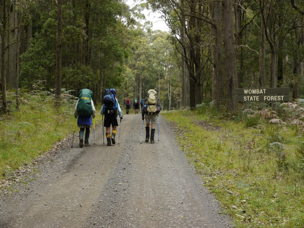 Hard road Wombat Forest Victoria