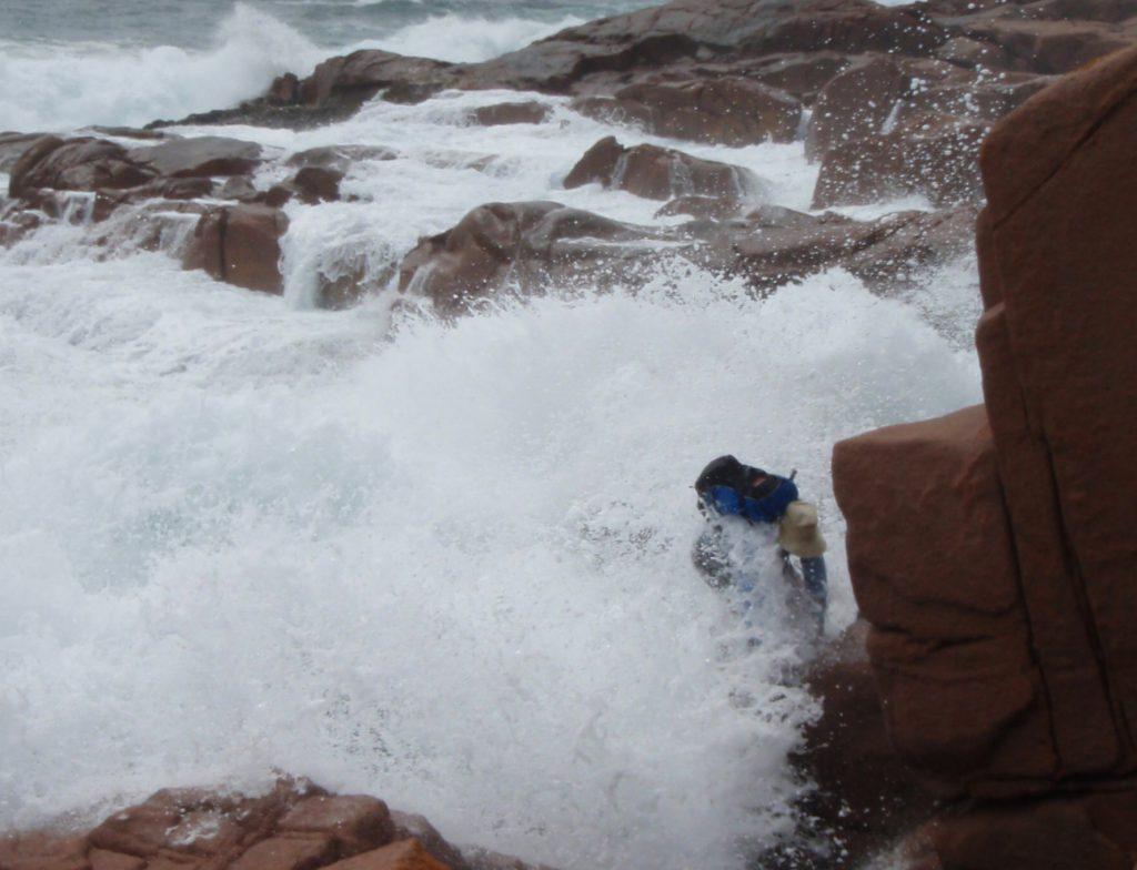 Gabo Island big wave coastal near miss
