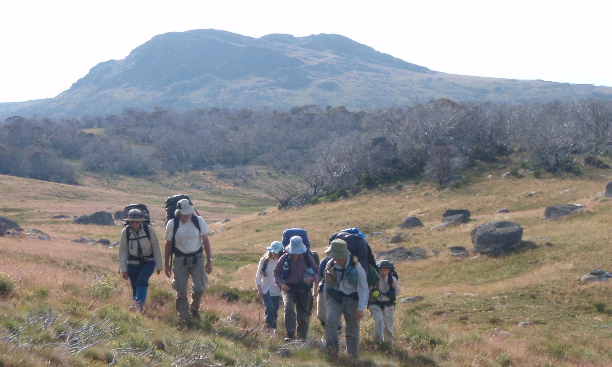 Bushwalking, Mt Jagungal NSW