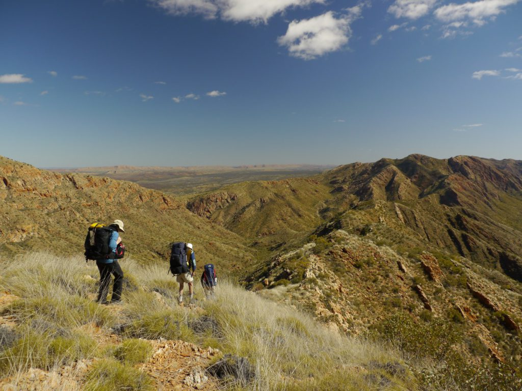 Northern Territory Ranges, Larapinta