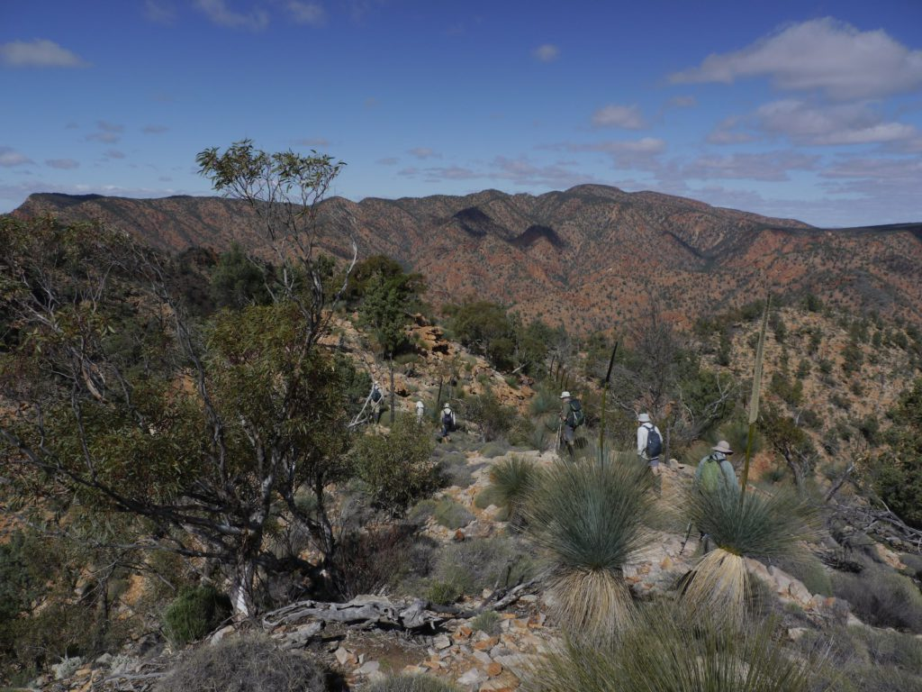 Cleft Peak, Gammon Ranges, SA