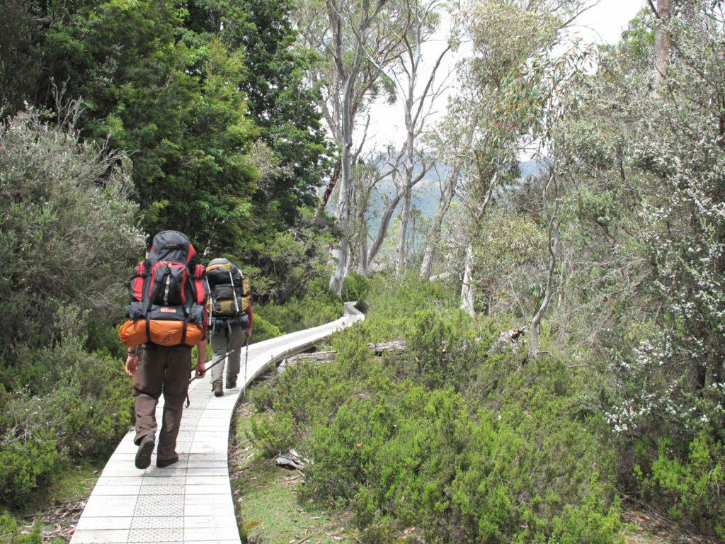 Duckboards Overland Track Tasmania